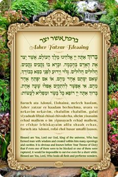 Picture of Asher Yatzar English - Chabad