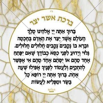 Picture of Aluminum Asher Yatzar Sign
